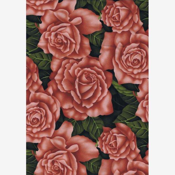 Roser - fersken-/laksefarvet