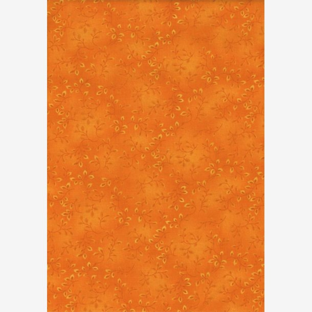 Folio Basics - Orange