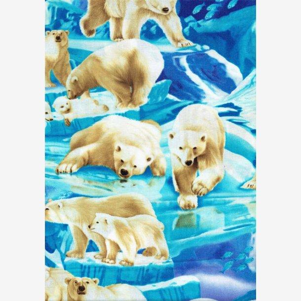 Isbjørne på isflager
